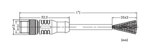 WAGO 756-1503/060-020 Sensor-/Aktor-Datensteckverbinder, konfektioniert M12 Stecker, gerade 2 m Polzahl: 5 1 St.