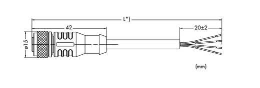 Sensor-/Aktor-Datensteckverbinder, konfektioniert Buchse, gerade 2 m WAGO 756-3101/040-020 1 St.