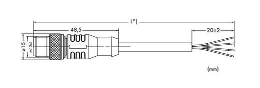 Sensor-/Aktor-Datensteckverbinder, konfektioniert M12 Stecker, gerade 20 m Polzahl: 4 WAGO 756-3103/040-200 1 St.