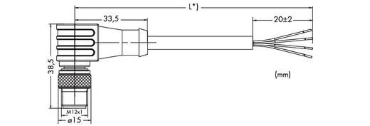 Sensor-/Aktor-Datensteckverbinder, konfektioniert M12 Stecker, gewinkelt 5 m Polzahl: 4 WAGO 756-3104/040-050 1 St.