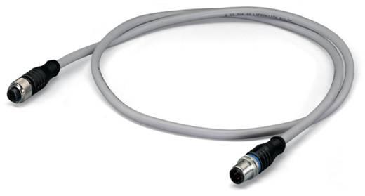Sensor-/Aktor-Datensteckverbinder, konfektioniert M12 Stecker, gerade, Buchse, gerade 0.20 m Polzahl: 4 WAGO 756-3105/04