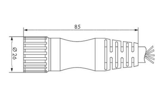 WAGO 756-3203/190-050 Sensor-/Aktor-Steckverbinder, konfektioniert M23 Buchse, gerade 5 m Polzahl: 12 1 St.