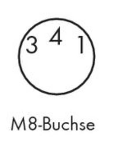 Sensor-/Aktor-Steckverbinder, konfektioniert M8 Buchse, gerade 1.50 m Polzahl: 3 WAGO 756-5101/030-015 10 St.