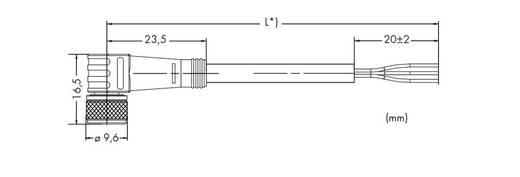 Sensor-/Aktor-Steckverbinder, konfektioniert M8 Buchse, gewinkelt 1.50 m Polzahl: 3 WAGO 756-5102/030-015 10 St.