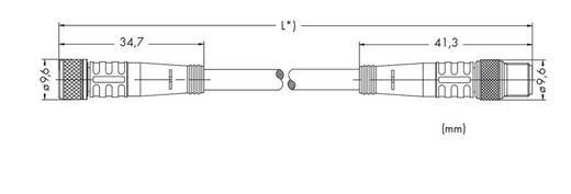 Sensor-/Aktor-Steckverbinder, konfektioniert M8 Stecker, gerade, Buchse, gerade 2 m Polzahl: 3 WAGO 756-5201/030-020 10