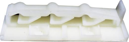 Befestigungssockel für Flachbandkabel Natur PB Fastener 332-7122-500 332-7122-500 1 St.