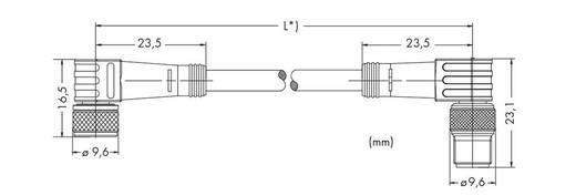 Sensor-/Aktor-Steckverbinder, konfektioniert Stecker, gewinkelt, Buchse, gewinkelt 2 m WAGO 756-5204/030-020 10 St.