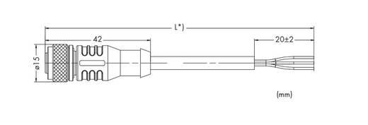 Sensor-/Aktor-Steckverbinder, konfektioniert Buchse, gerade 5 m WAGO 756-5301/050-050 10 St.