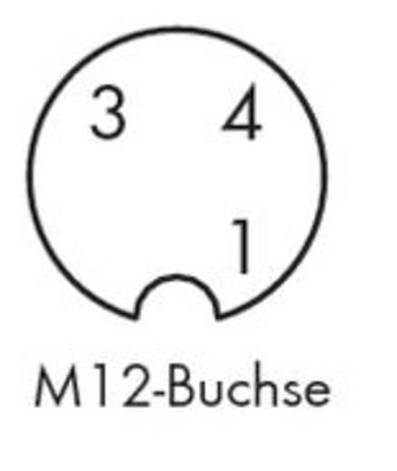 Sensor-/Aktor-Steckverbinder, konfektioniert Buchse, gerade 1.50 m WAGO 756-5301/030-015 10 St.