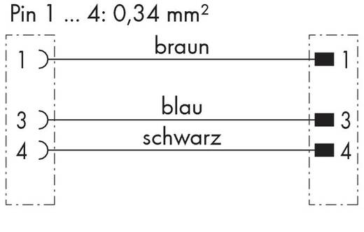 Sensor-/Aktor-Steckverbinder, konfektioniert Stecker, gewinkelt, Buchse, gewinkelt 1 m WAGO 756-5404/030-010 10 St.