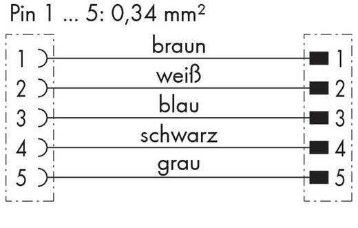 Sensor-/Aktor-Steckverbinder, konfektioniert Stecker, gewinkelt, Buchse, gerade 2 m WAGO 756-5402/050-020 10 St.