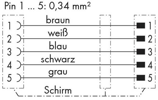WAGO 756-5401/060-010 Sensor-/Aktor-Steckverbinder, konfektioniert M12 Stecker, gerade, Buchse, gerade 1 m Polzahl: 5 10