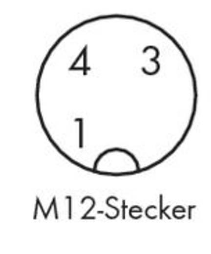 WAGO 756-5312/030-050 Sensor-/Aktor-Steckverbinder, konfektioniert M12 Stecker, gewinkelt 5 m Polzahl: 3 10 St.