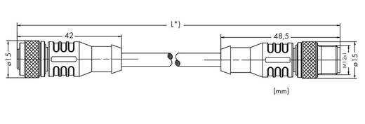 Sensor-/Aktor-Steckverbinder, konfektioniert M12 Stecker, gerade, Buchse, gerade 2 m Polzahl: 3 WAGO 756-5401/030-020 1