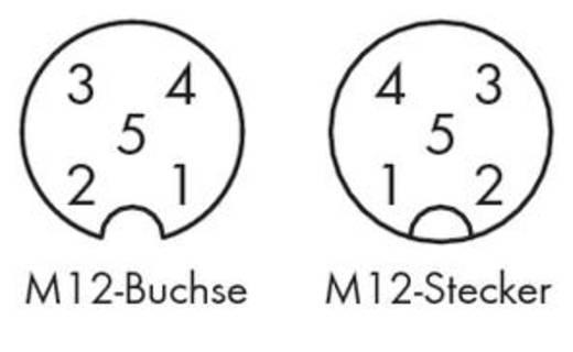 Sensor-/Aktor-Steckverbinder, konfektioniert Stecker, gewinkelt, Buchse, gerade 1 m WAGO 756-5402/050-010 10 St.