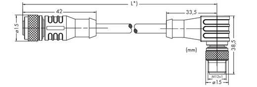 WAGO 756-5402/040-010 Sensor-/Aktor-Steckverbinder, konfektioniert M12 Stecker, gewinkelt, Buchse, gerade 1 m Polzahl: 4