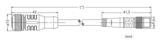 Sensor-/Aktor-Steckverbinder, konfektioniert M12 Stecker, gerade, Buchse, gerade 2 m Polzahl: 3 WAGO 756-5501/030-020 1