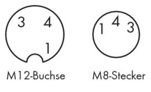 Sensor-/Aktor-Steckverbinder, konfektioniert M12 Stecker, gewinkelt, Buchse, gerade 1 m Polzahl: 3 WAGO 756-5502/030-010