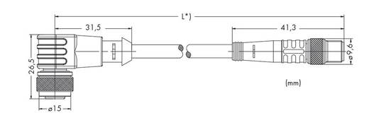 Sensor-/Aktor-Steckverbinder, konfektioniert M12 Stecker, gerade, Buchse, gewinkelt 2 m Polzahl: 3 WAGO 756-5503/030-020
