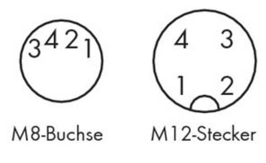 Sensor-/Aktor-Steckverbinder, konfektioniert M8 Stecker, gerade, Buchse, gewinkelt 1 m Polzahl: 4 WAGO 756-5509/040-020