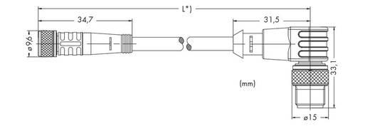 Sensor-/Aktor-Steckverbinder, konfektioniert M8 Stecker, gewinkelt, Buchse, gerade 2 m Polzahl: 4 WAGO 756-5508/040-020