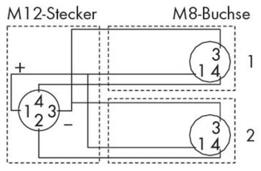 Sensor-/Aktor-Verteiler und Adapter M8 Stecker, gerade, Buchse, gewinkelt 2 m WAGO 756-5514/040-020 10 St.