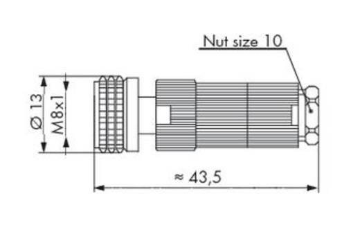 Sensor-/Aktor-Steckverbinder, unkonfektioniert M8 Buchse, gerade Polzahl (RJ): 3 WAGO 756-9112/030-000 5 St.