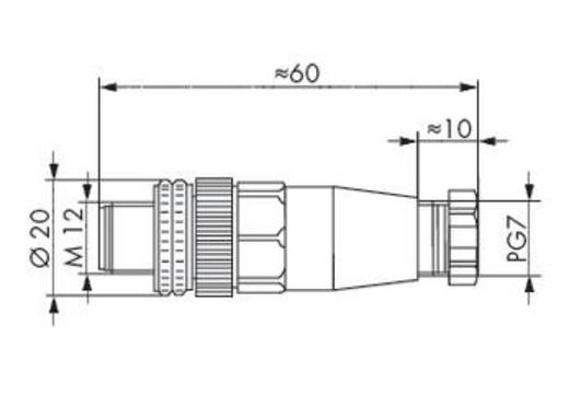Sensor-/Aktor-Steckverbinder, unkonfektioniert M12 Stecker, gerade Polzahl: 5 WAGO 756-9201/050-000 5 St.