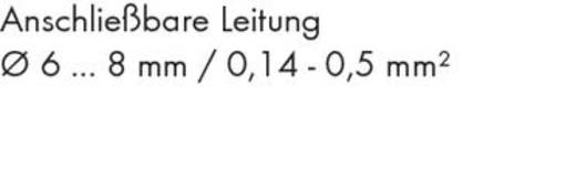 Sensor-/Aktor-Steckverbinder, unkonfektioniert M12 Buchse, gewinkelt Polzahl (RJ): 5 WAGO 756-9210/060-000 1 St.