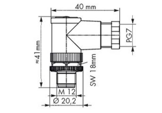 Sensor-/Aktor-Steckverbinder, unkonfektioniert M12 Stecker, gewinkelt Polzahl (RJ): 4 WAGO 756-9205/040-000 5 St.