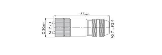 Sensor-/Aktor-Steckverbinder, unkonfektioniert M12 Stecker, gerade Polzahl: 5 WAGO 756-9208/060-000 1 St.