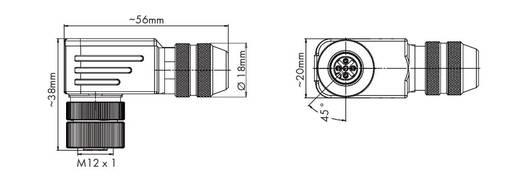 Sensor-/Aktor-Steckverbinder, unkonfektioniert M12 Buchse, gewinkelt Polzahl: 5 WAGO 756-9210/060-000 1 St.