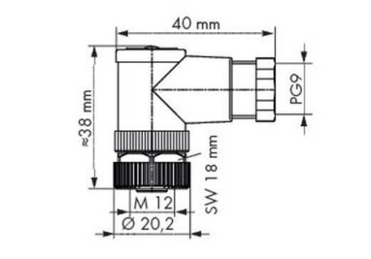 Sensor-/Aktor-Steckverbinder, unkonfektioniert M12 Buchse, gewinkelt Polzahl (RJ): 4 WAGO 756-9216/040-000 5 St.