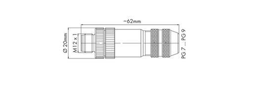 M12-Stecker 756-9401/060-000 WAGO Inhalt: 1 St.