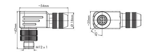 Sensor-/Aktor-Steckverbinder, unkonfektioniert M12 Stecker, gewinkelt Polzahl: 5 WAGO 756-9403/060-000 1 St.