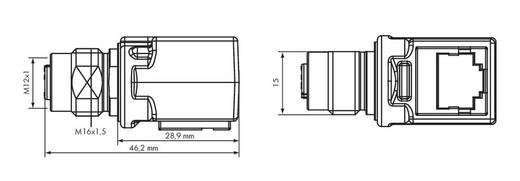 Adapter M12-Buchse 756-9503/040-000 WAGO Inhalt: 1 St.