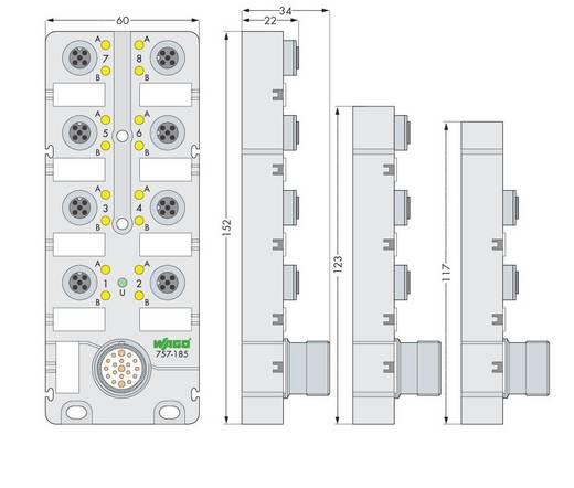 Sensor/Aktorbox passiv M12-Verteiler mit Metallgewinde 757-145 WAGO 1 St.