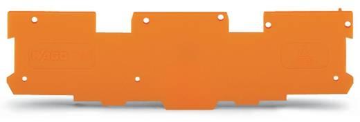 Abschluss- und Zwischenplatte 769-318 WAGO Inhalt: 100 St.