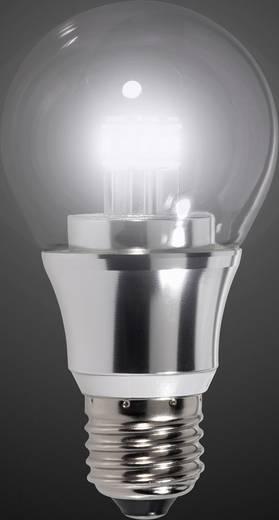 RENKFORCE LED E27 5.5W=40W kalt-weiß Glühlampenform dimmbar