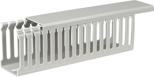 Verdrahtungskanal (L x B x H) 2000 x 45 x 65 mm KSS KDR-5L/ 9163C7 1 St. Grau