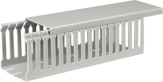 Verdrahtungskanal (L x B x H) 2000 x 65 x 65 mm KSS KDR-5.7L/ 9163C8 1 St. Grau