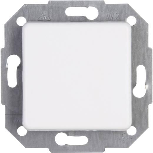 Kopp Einsatz Taster Europa Arktis-Weiß, Matt 614313060