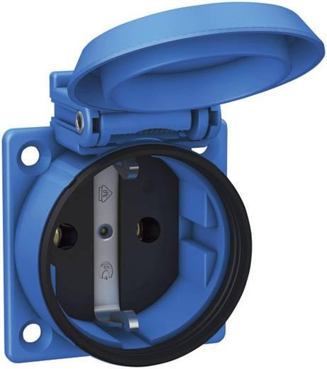 Einbau-Steckdose IP54 Blau ABL Sursum 1561050