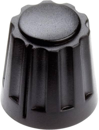 Drehknopf Schwarz (Ø x H) 14.5 mm x 14 mm Mentor 4331.6000 1 St.