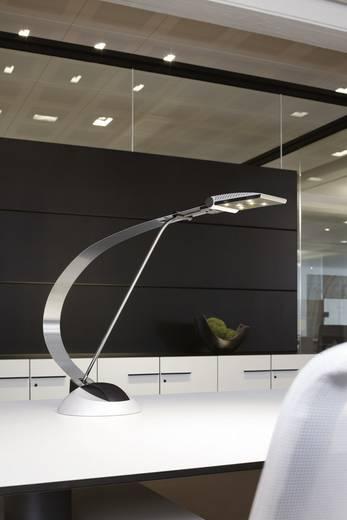 LED-Designlampe MAULprimus, silber
