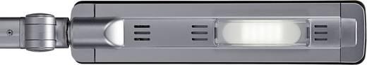 LED-Schreibtischleuchte Neutral-Weiß Maul MAULpure 8202295 Silber