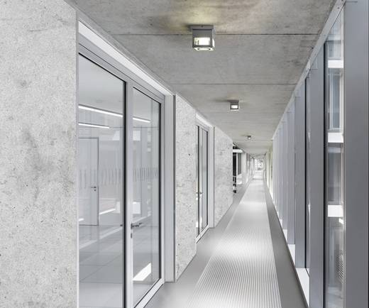 Elice LED-Deckenleuchte 15 W Kalt-Weiß Silber-Grau