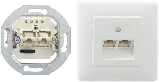 Netzwerkdose Unterputz Einsatz mit Zentralplatte und Rahmen Rutenbeck 13011240 Reinweiß