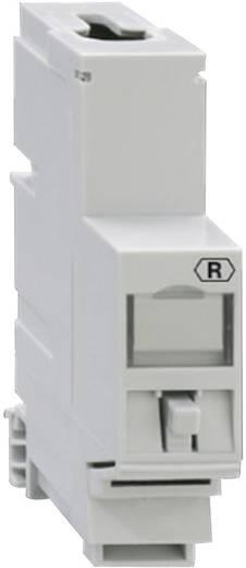 Netzwerkdose Hutschiene CAT 6a Rutenbeck 13900003 Grau