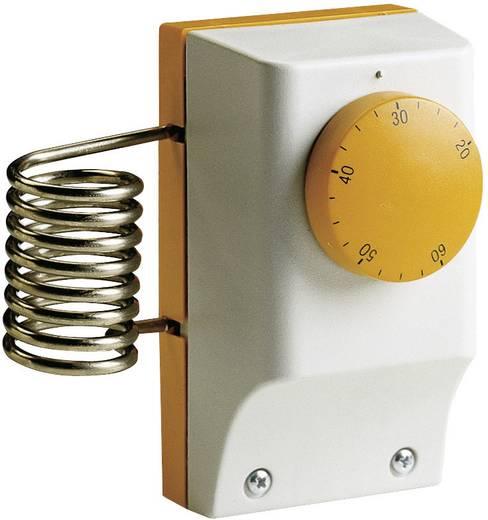 Industriethermostat Aufbau 20 bis 60 °C 1TCTB091